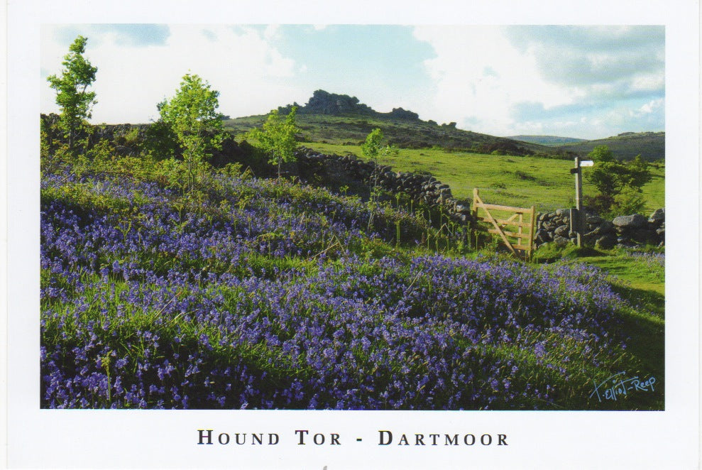 P060 - Hound Tor- Postcard - Regular - Pack of 10