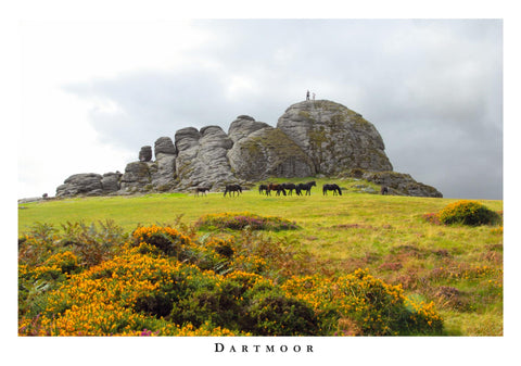P064 - Haytor Layout - Postcard - Regular - Pack of 10
