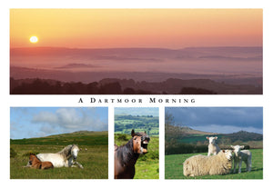 P066 - A Dartmoor Morning - Postcard - Regular - Pack of 10