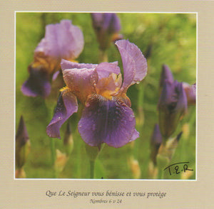 FS068 - Iris - French Scripture Card - Square