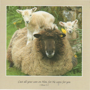 S069 - Ewe and Lambs - Scripture Card - Square