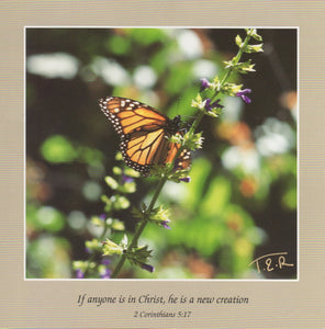 S077 - Butterfly - Scripture Card - Square