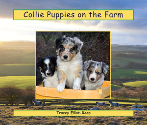 B027 - Collie Puppies on the Farm - Flexi-cover Book