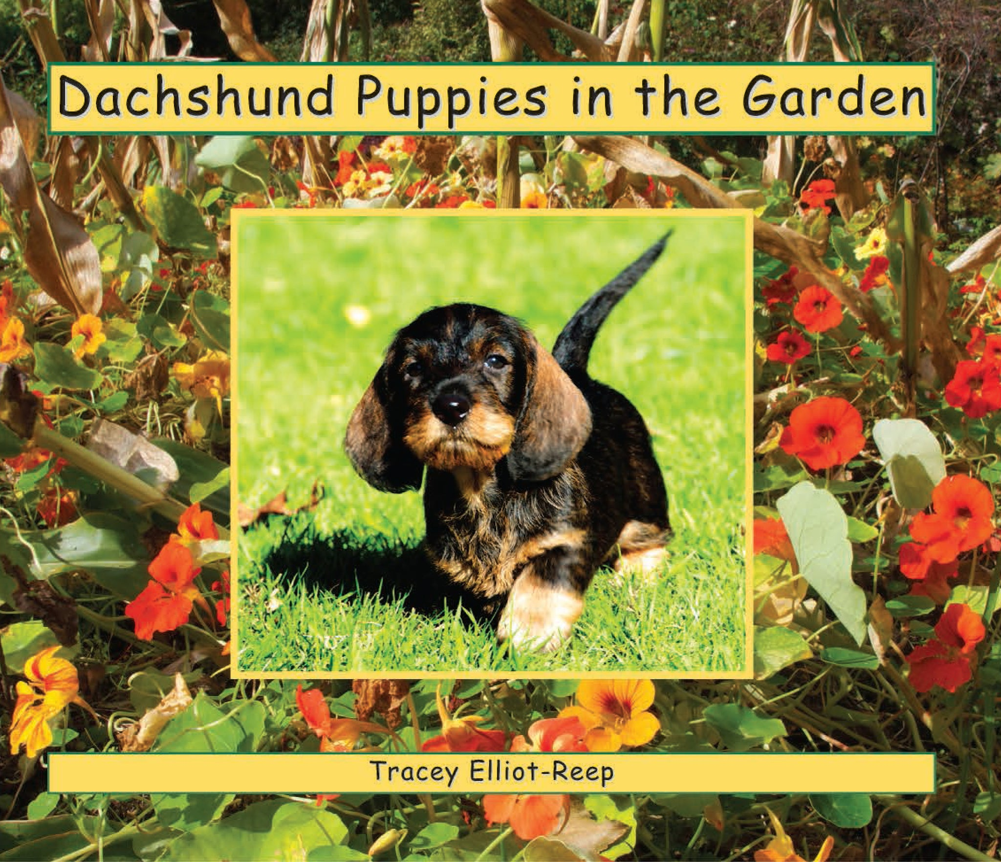 B025 - Dachshunds Puppies in the Garden - Flexi-Cover Book