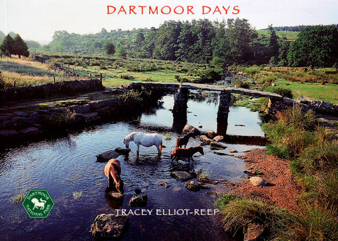 B18 - Dartmoor Days - Flexi-Cover Book