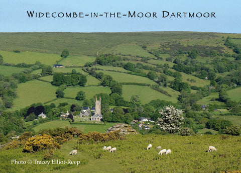 M02 - Widecombe Fridge Magnet