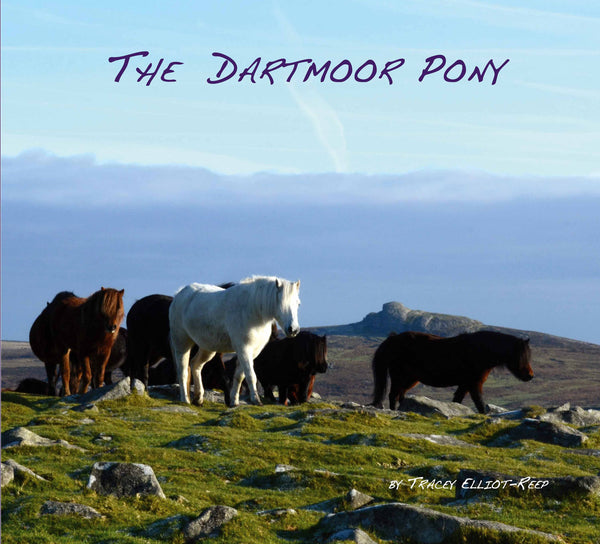 B06 - The Dartmoor Pony Book - Inc 2 Free Pony Bookmarks
