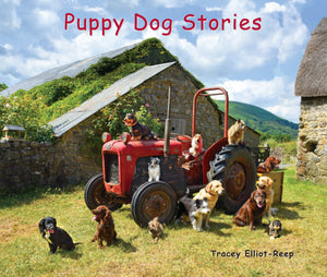 B024- Puppy Dog Stories - Boxset of all 5 Flexi-Cover Books Plus a free book 'A Day On Dartmoor with Rainbow the Pony' worth £5.95