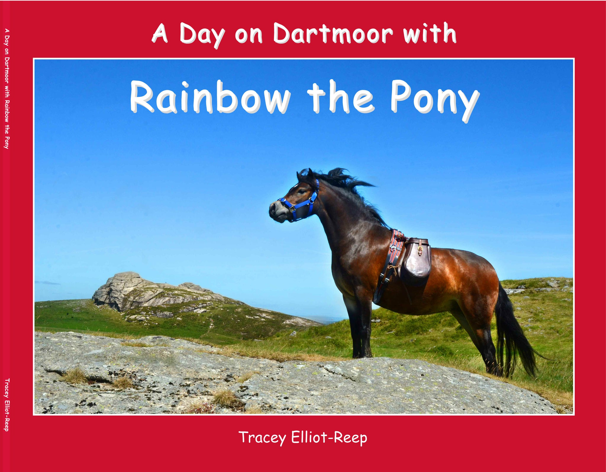 B08 - A Day on Dartmoor – Rainbow the Pony - Paperback Book
