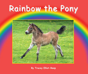B10 - Rainbow the Pony - Flexi-Cover Book