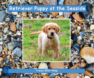 B026 - Retriever Puppy at the Seaside - Flexi-Cover Book