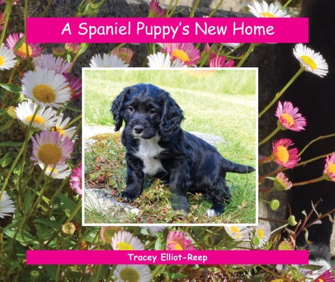 B028 - A Spaniel Puppy's New Home - Flexi-cover Book
