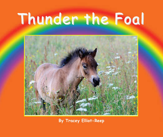 B17 - Thunder the Foal - Flexi-Cover Book
