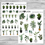Plant Life Collection