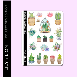 COLLECTOR'S EDITION: Succulents