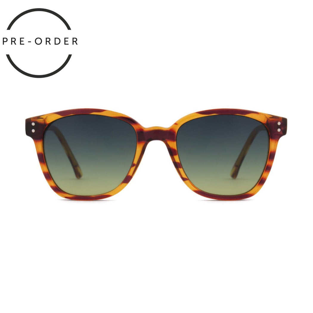 Renee Lined Tortoise Sunglasses