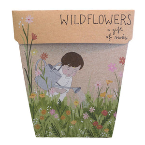 Sow 'n Sow's Gift of Seeds - Wildflowers