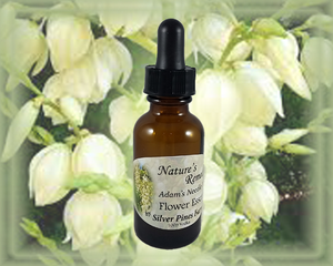 Adam's Needle Yucca Flower Essence - Nature's Remedies