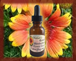 Blanketflower Flower Essence - Nature's Remedies
