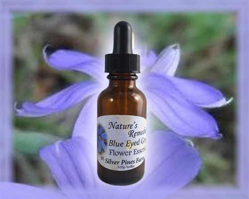 Blue Eyed Grass Flower Essence - Nature's Remedies