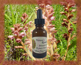 Broomrape Flower Essence - Nature's Remedies