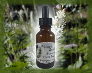 Bugbane Flower Essence - Nature's Remedies