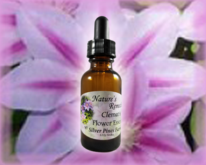 Clematis Flower Essence - Nature's Remedies