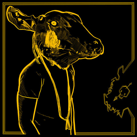 SHAKEY GRAVES - Roll The Bones X (Gold & Black Vinyl)