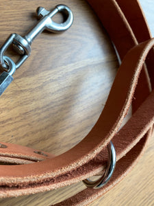 Spoiled Pilates Pooch Leash