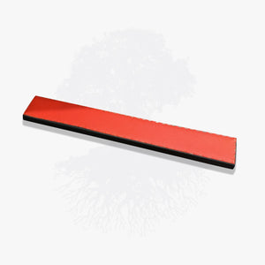 Pilates Lineage Kathy Grant Footboard in Red