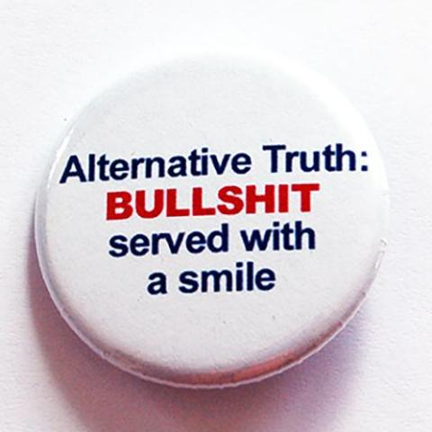 Alternative Truth Pin - Kelly's Handmade