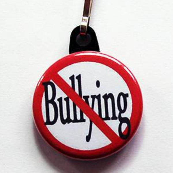 Stop Bullying Zipper Pull - Kelly's Handmade