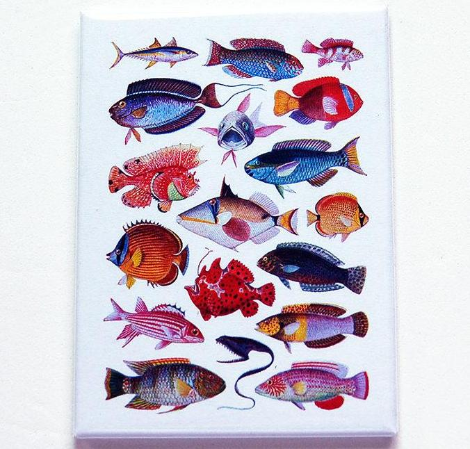 School Of Fish Rectangle Magnet - Kelly's Handmade