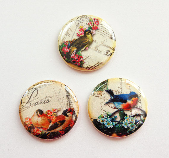 Birds & Flowers Set of Six Magnets - Kelly's Handmade