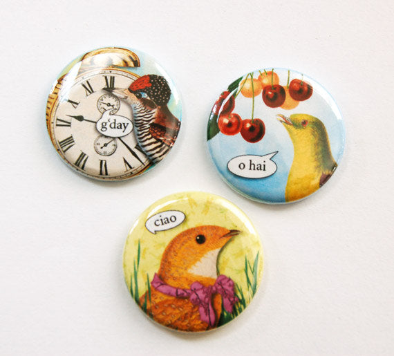 Hello! Bird Talk Set of Six Magnets - Kelly's Handmade