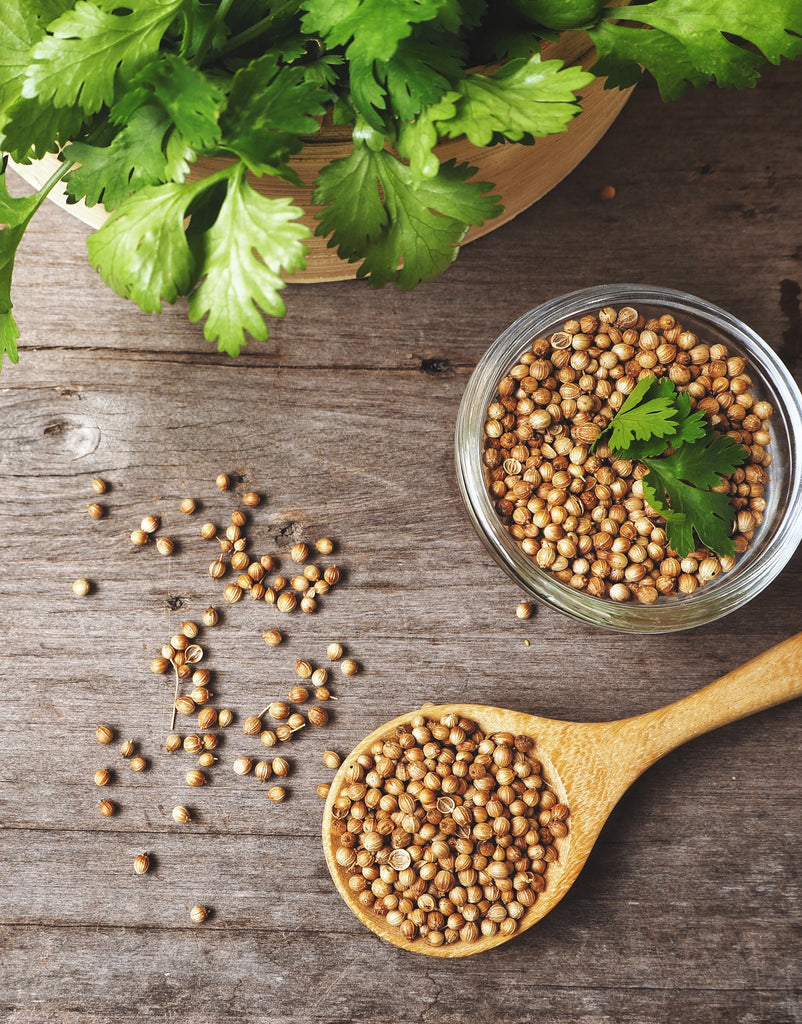 All About Coriander