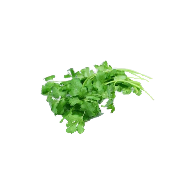 Large Bunch Fresh Coriander