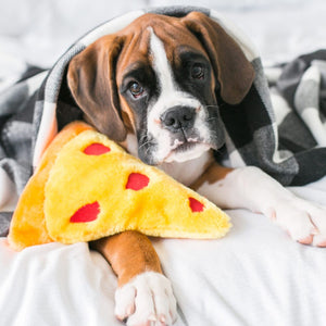 ZippyPaws Emojiz Pizza Dog Toy