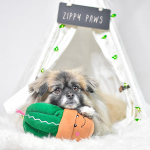 ZippyPaws Carmen the Cactus Dog Toy