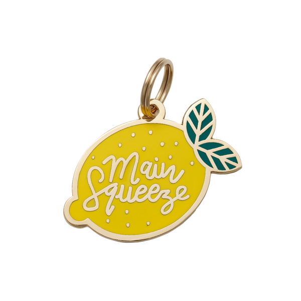 Pet ID Tag - Main Squeeze