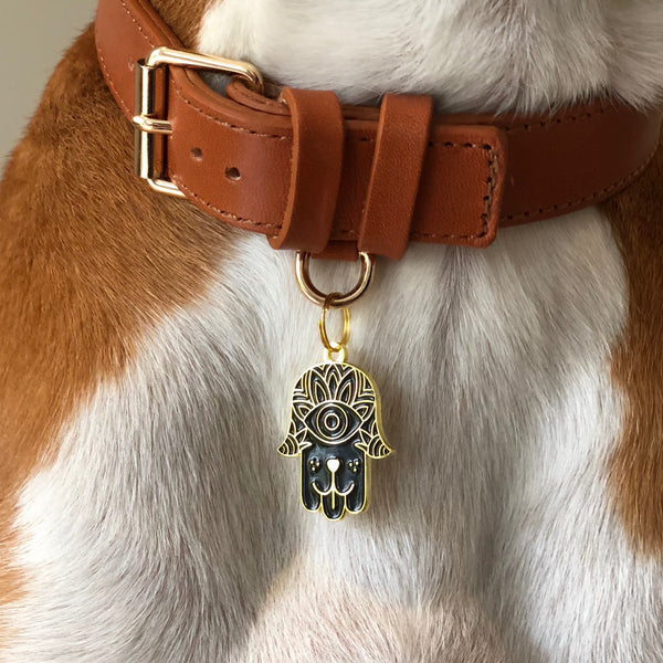 Pet ID tag hanging on a collar worn by a brown and white dog. It is made of gold plated brass and black enamel in the shape of a hamsa.