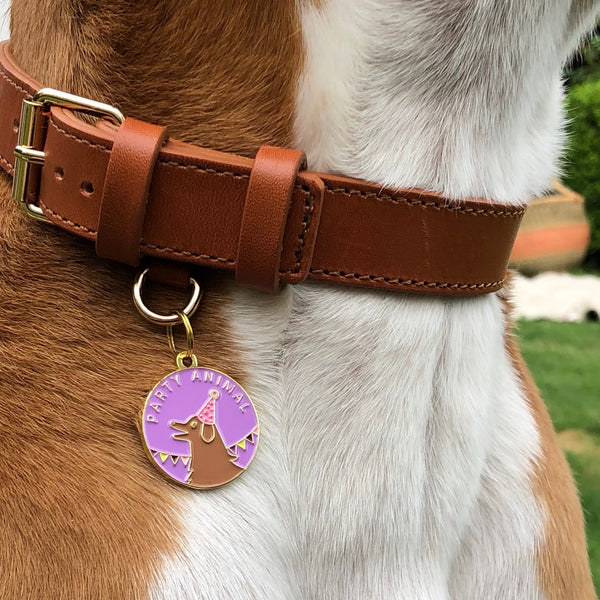 Pet ID tag hanging on a collar worn by a brown and white dog. It is made of gold plated brass and purple enamel that read 'Party Animal' and depicts a dog wearing a party hat.