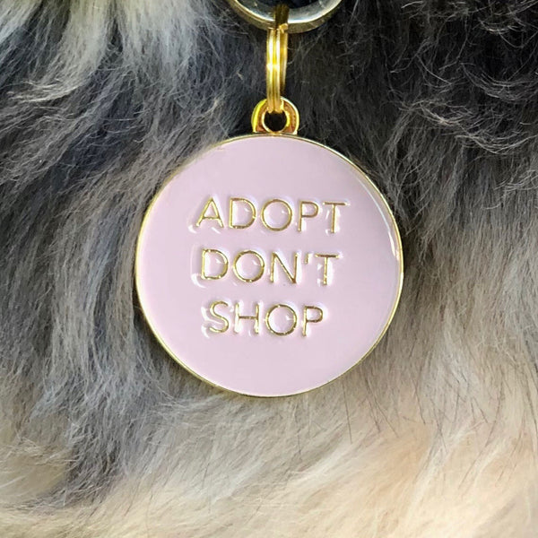 Pet ID tag hanging on a collar worn by a black and blonde dog. Made of gold plated brass and pink enamel, it reads 'Adopt Don't Shop'.