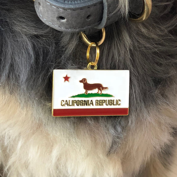 Pet ID tag hanging on a collar worn by a black and blonde dog. Made of gold plated brass with red and white enamel in the style of a California state flag but with a small dog instead of a bear.