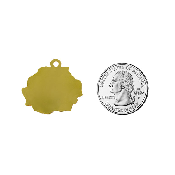 A size comparison of our rose shaped pet ID tag measuring next to a United States Quarter.
