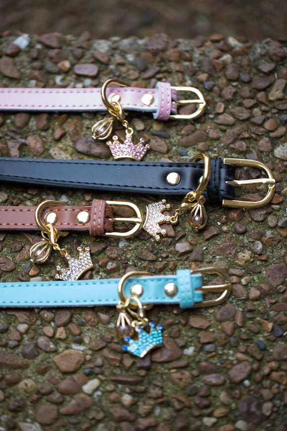 Pet collar with cage and charm