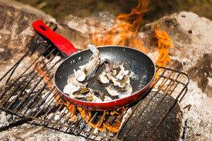 Campfire Cooking Essentials