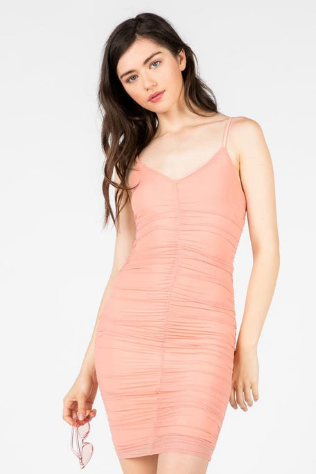 CRANES IN THE SKY MESH MINI DRESS