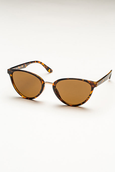 Accessories - TINTED PLASTIC FRAME SUNGLASSES