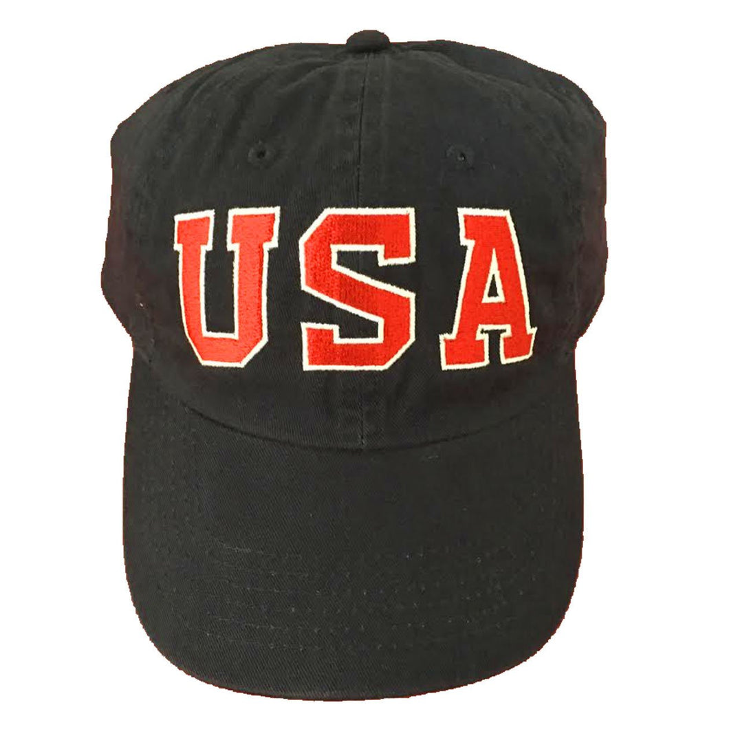 Team USA Dad Hat